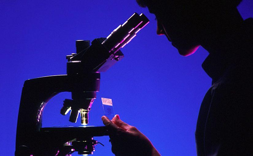 Детский микроскоп: 10 объектов для исследования