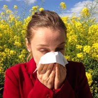 Это апчхи неспроста! Аллергия летом и как с ней жить